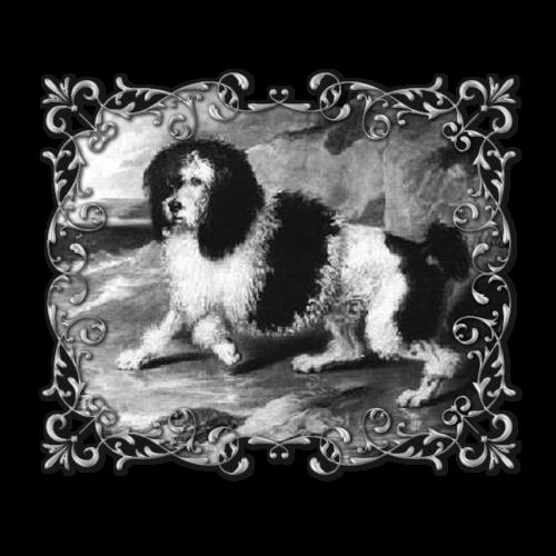 Poodle-Old2